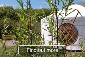 Yurt camping in Pembrokeshire